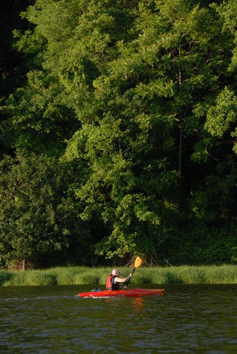 Scott, grass, kayak, kayaking, shoreline, trees, water