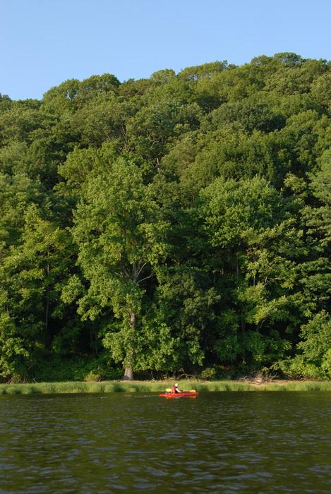 Scott, grass, kayak, kayaking, shoreline, trees, water, blue sky