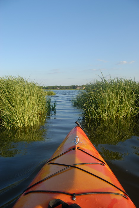 kayak, water, river, grass, channel