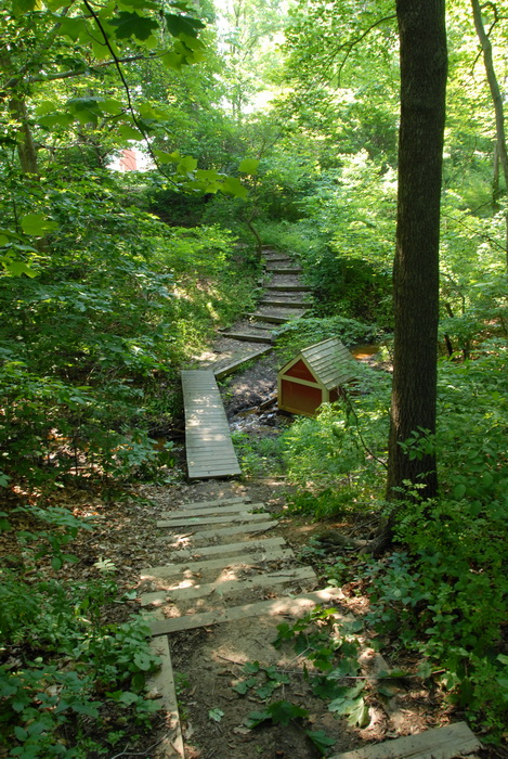 trees, woods, shed, boardwalk, ground cover, stairs, stream