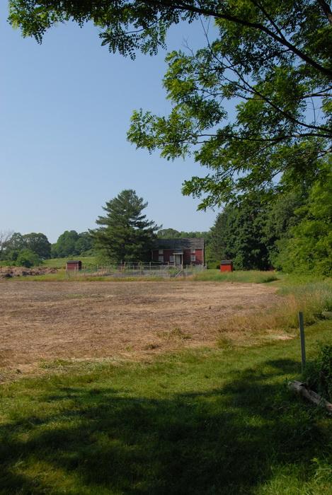 trees, field, farmhouse, blue sky