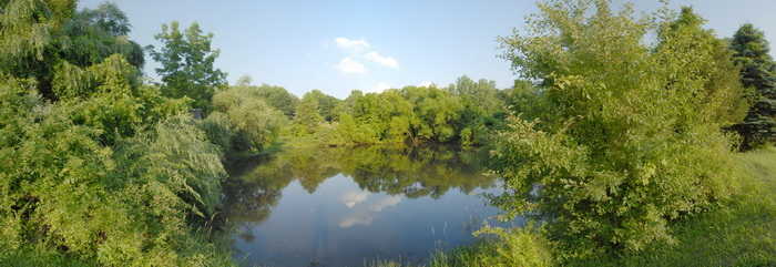 panoramic, pond, reflection, trees, water