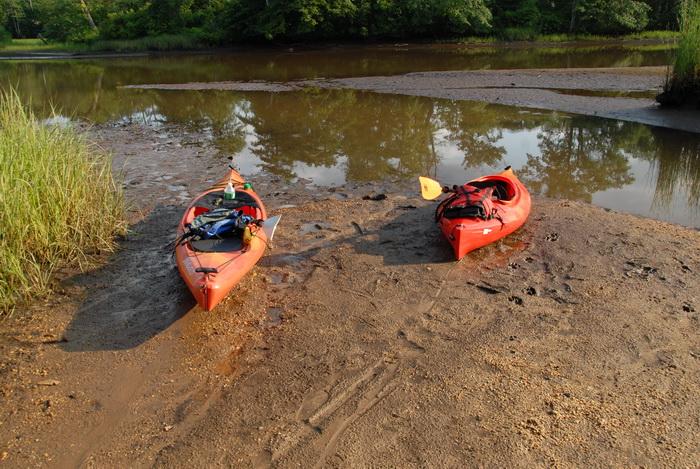 Swifty, grass, kayak, mud, river, shoreline, water
