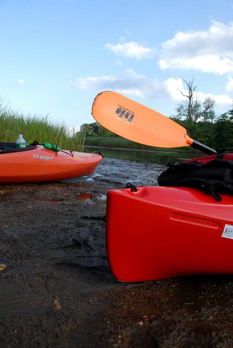 kayak, mud, paddle, water