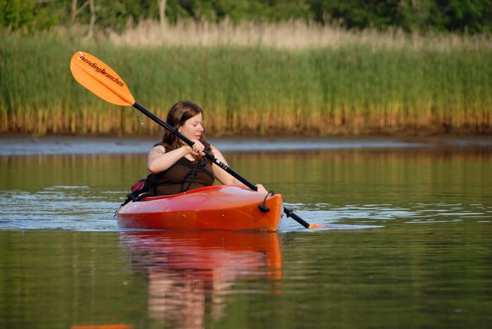 Jackie, Swifty, kayak, kayaking, marsh, paddle, paddling, reeds, river, shoreline