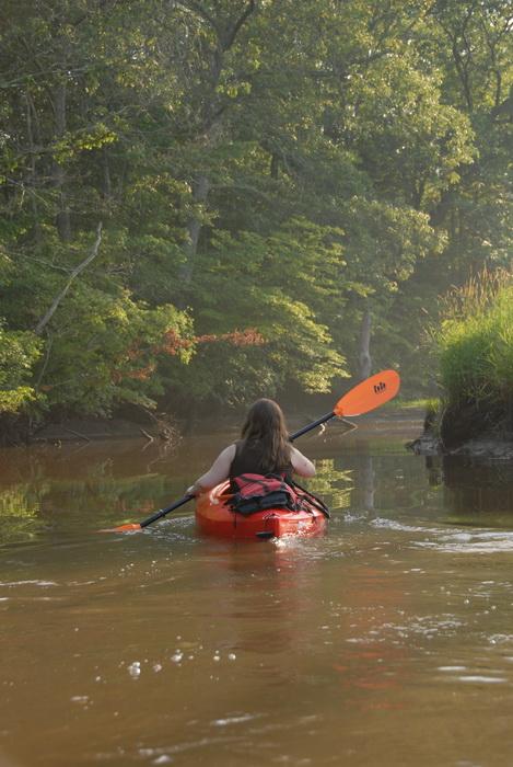 Jackie, grass, kayak, kayaking, paddle, paddling, river, shoreline, trees, water