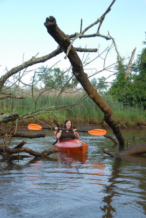 Jackie, kayak, kayaking, paddle, paddling, water, river, reeds, down trees