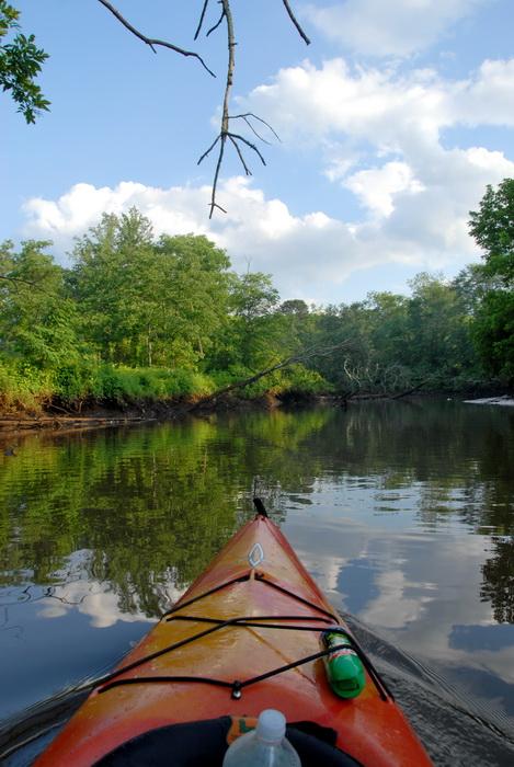 river, kayak, trees