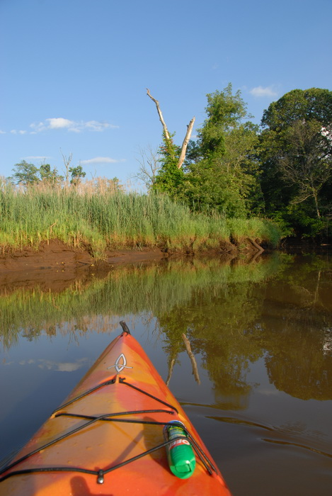 kayak, river, water, shoreline, riverbank, reeds, tree