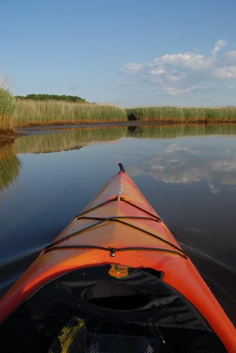 kayak, water, river, reeds, blue sky