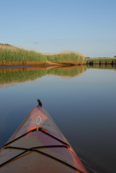 blue sky, kayak, reeds, river, water