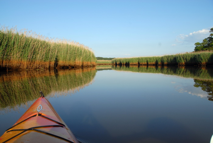 river, water, reeds, reflection, kayak, blue sky