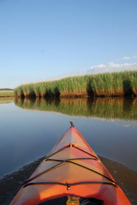 blue sky, kayak, reeds, reflection, river, water