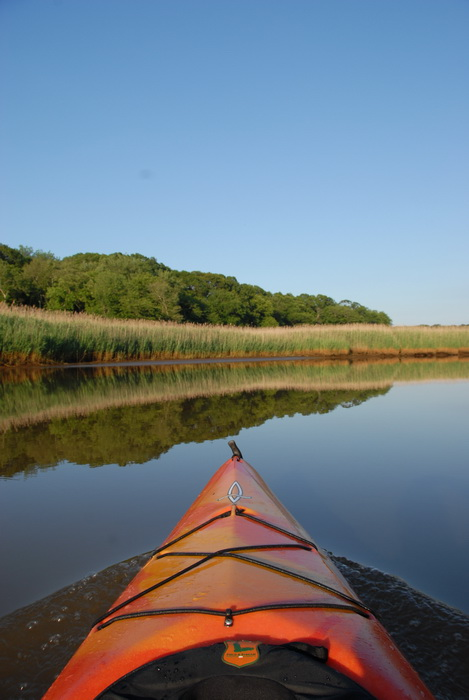 blue sky, kayak, reeds, reflection, river, water, trees