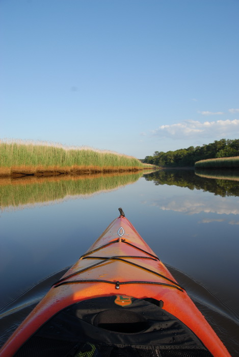 blue sky, kayak, reeds, reflection, river, trees, water