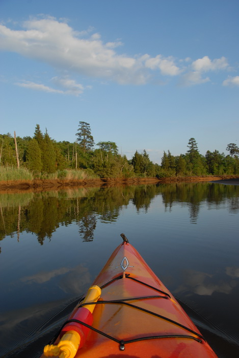 blue sky, ground cover, kayak, river, shoreline, trees, water