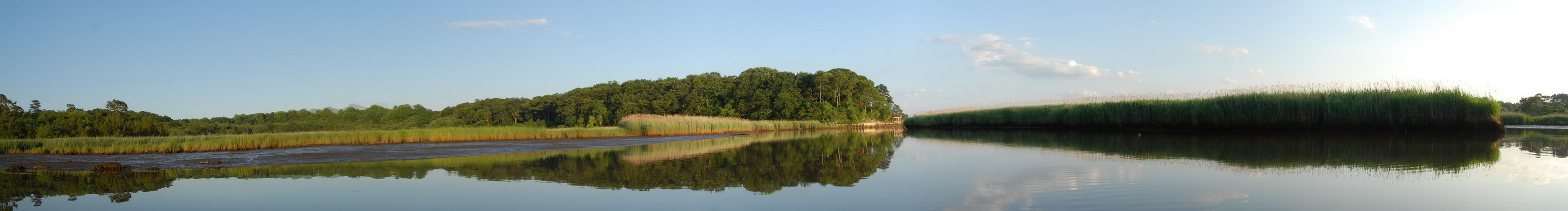 panoramic, blue sky, ground cover, river, riverbank, shoreline, trees, water