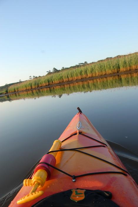 kayak, reeds, river, shoreline, turning, water