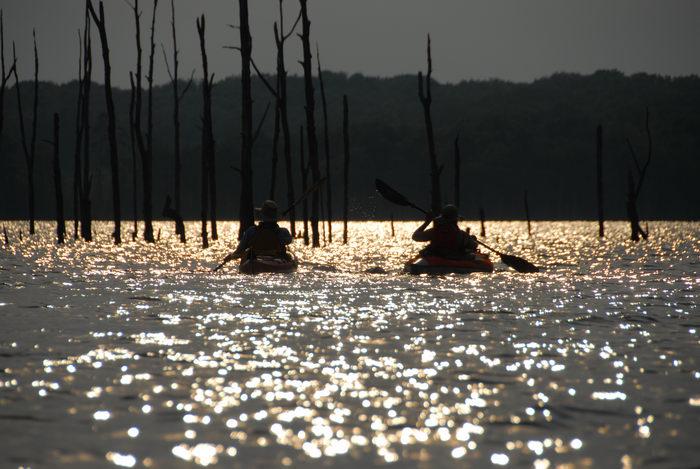 JSSKA, dead trees, kayak, kayaking, lake, paddling, people, reservoir, sunset, water