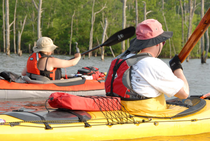 JSSKA, dead trees, kayak, kayaking, lake, paddling, people, reservoir, trees, water
