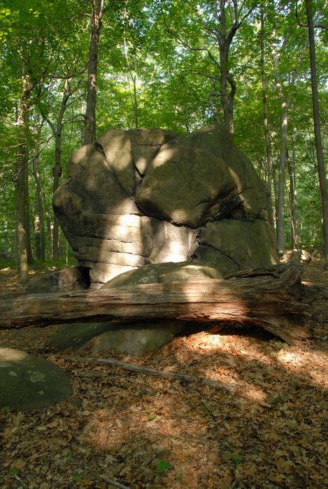 boulder, Tent Rock, glacial erratic, log, trees, woods