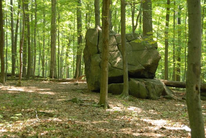 Tent Rock, woods, trees