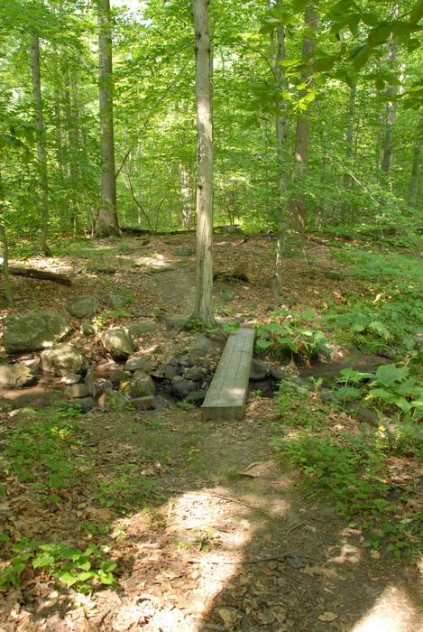 dirt path, dirt trail, ground cover, path, trail, bridge