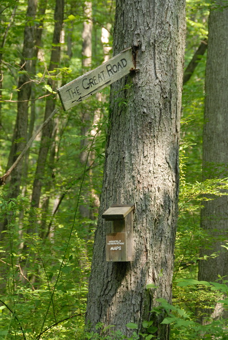 tree, woods, sign, map holder