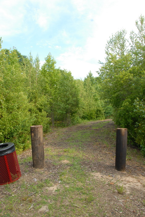 bushes, dirt path, path, posts, trees, walkway, wood chips, grass