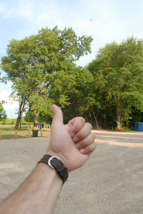car, field, parking, posts, sign, trees, Thumbs across America