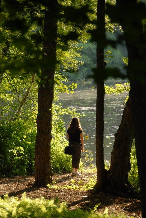 Jackie, Millhurst Mills Lake, My Favorite Pictures, bushes, leaves, pond, trees, water, woods