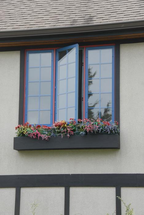 window, flowers