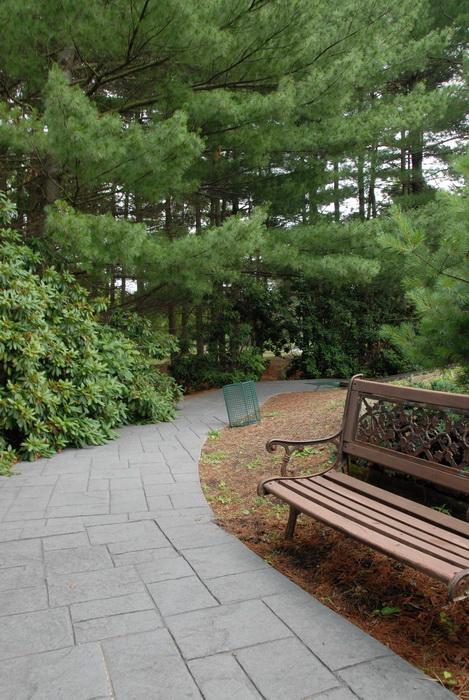 bench, path, walkway, trees, garbage bin
