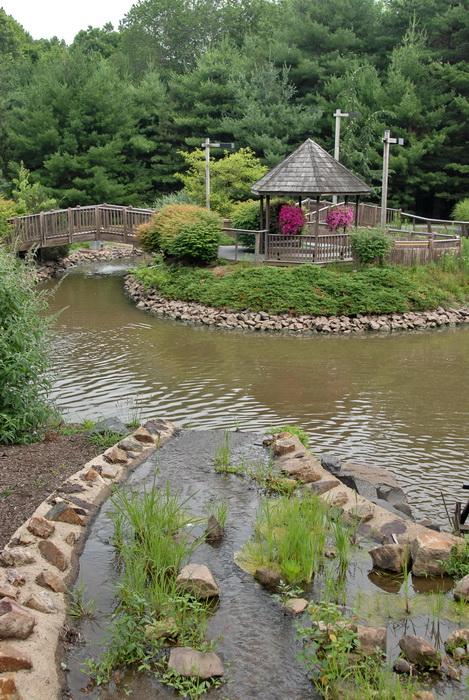 trees, gazebo, water, stream, pond, bridge, grass, bushes, rocks