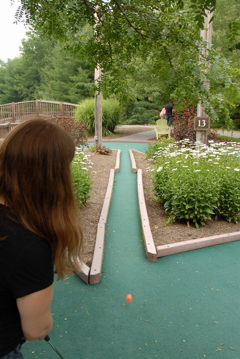 action, flowers, golf ball, golf green, minigolf, obstacle, sign, trees, Jackie