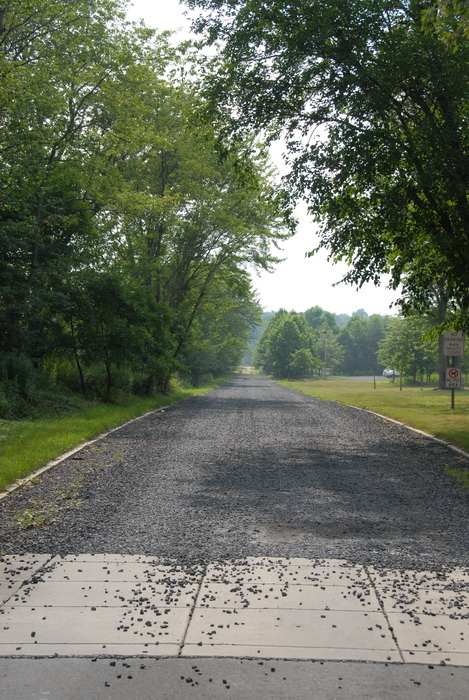 trees, grass, haze, road, gravel road