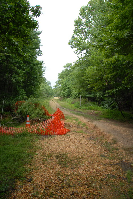dirt trail, trees, grass, sign, cone, snow fence