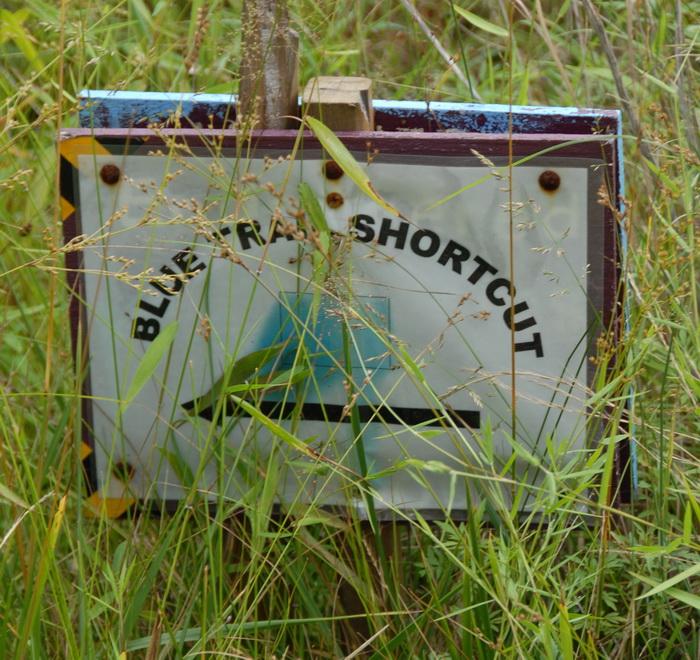 grass, sign, blue trail