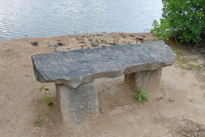 dirt, goose poop, stone bench, trees, water