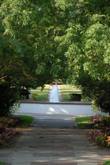 trees, path, walkway, pavers, fountain
