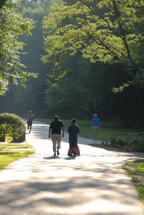 paved path, path, people, walking, jogging, trees, haze