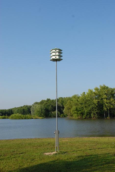 blue sky and, bird feeder, bird house, water, pond, grass