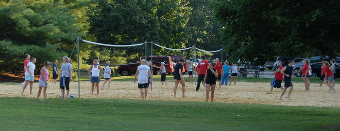 volleyball, net, players, action, grass, sand, shadow