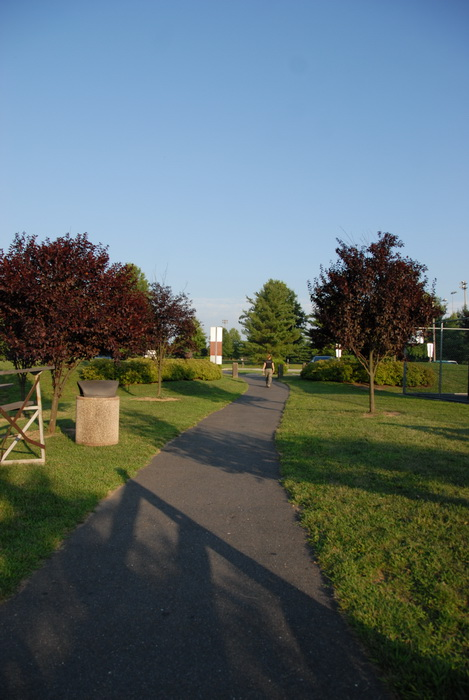paved path, blue sky and, trees, grass, shadows