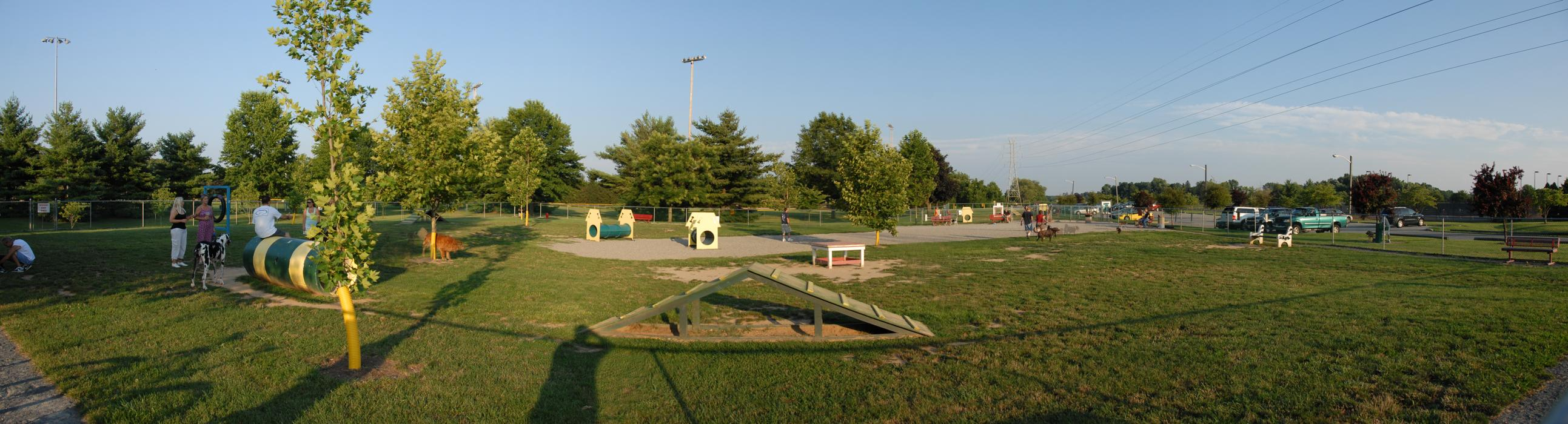 panoramic, blue sky and, dog park, dogs, grass, obstacle, people, pets, shadow, trees