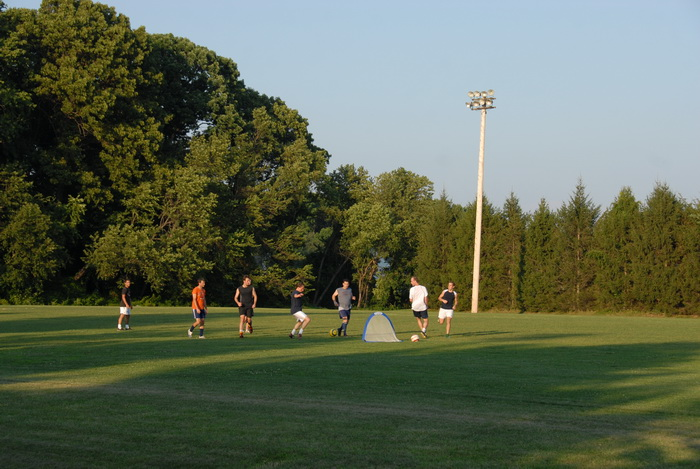 soccer, players, game, practice, net, grass, field, trees, light pole