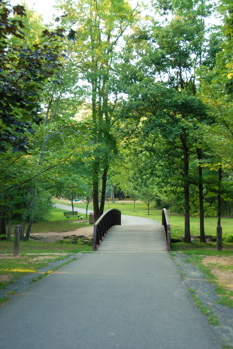 paved path, bridge, trees, woods, grass