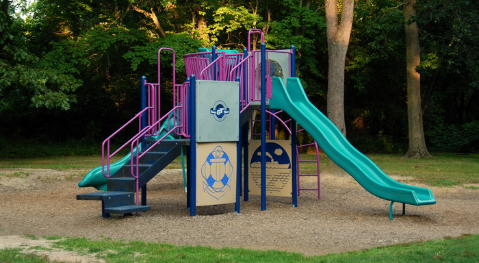 playground, equipment, grass, trees, slide, pole, stairs