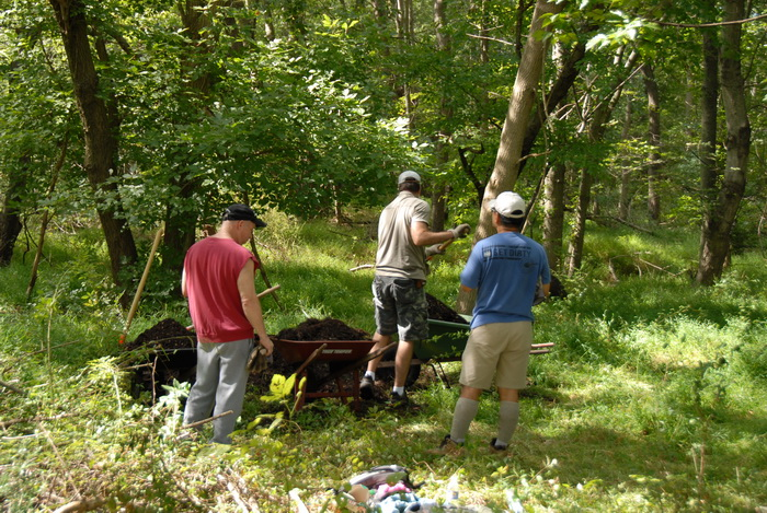 tools, trees, woods, S.M.A.R.T.