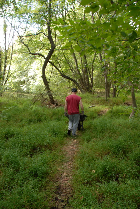 path, tools, trail, trail maintenance, trees, woods, S.M.A.R.T.